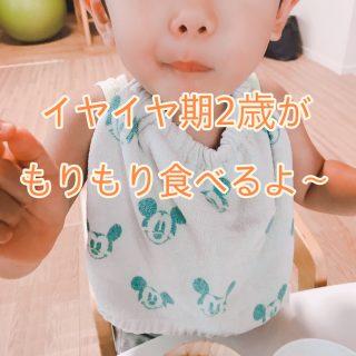2歳半 イヤイヤ期息子がモリモリ食べる食材