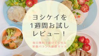 ヨシケイ レビュー 口コミ ブログ